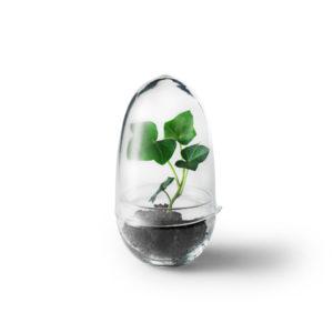 grow-small